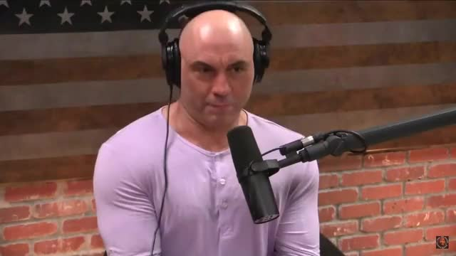Watch and share Joe Rogan GIFs and Jre GIFs by LennyBodega on Gfycat