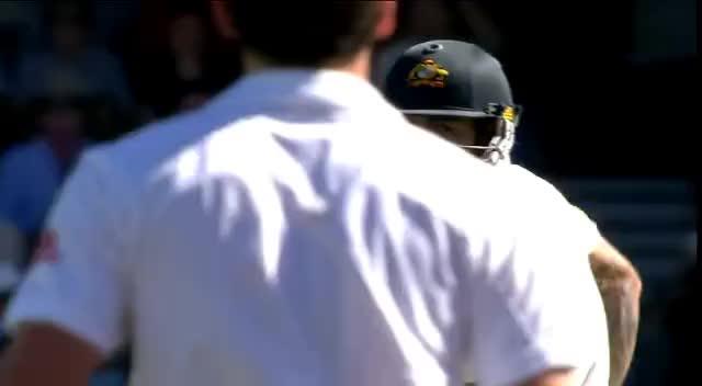 cricket, jimmy2, CRICKET GIFs