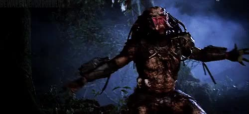 Watch and share The Predator GIFs on Gfycat