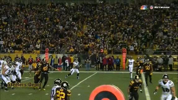 Watch and share Terrible Towel Steelers GIFs on Gfycat