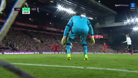 LiverpoolFC, Liverpool Gifs - Lloris keeping Spurs in this #LFCTOT #LIVTOT 2-0. GIFs