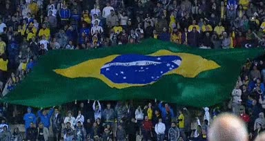 Watch and share 🇧🇷 — Brazil GIFs on Gfycat