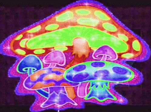 Watch and share Mushrooms GIFs on Gfycat