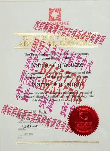 Watch and share 做个假的福冈女子大学毕业证成绩单[咨询微信:BZ557788]办理世界各国证书证件 GIFs on Gfycat