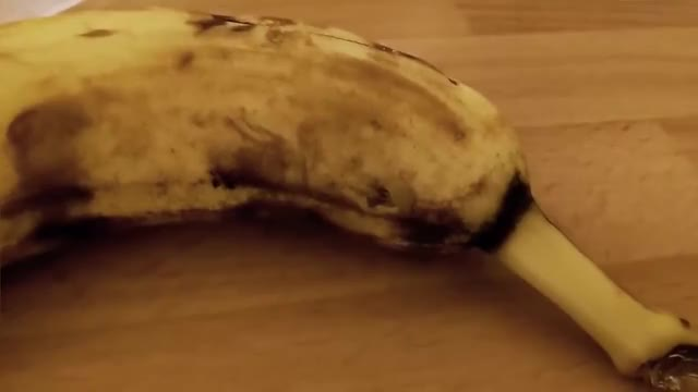 Watch Spider bursts out of a Banana GIF on Gfycat. Discover more Burst, Compilation, RHA, Scary, banana, banane, bursting, com, eklig, funny, ha, lechowski, nopetrain, spiders, spinne, spinnenbabies, suddenly, why, widerlich, wtf GIFs on Gfycat
