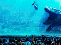Watch jurassic world, movie, dinosaur, mosasaurs, swim GIF on Gfycat. Discover more related GIFs on Gfycat