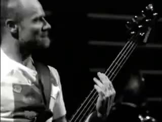 Watch and share Flea Bass Rhcp Snow GIFs on Gfycat