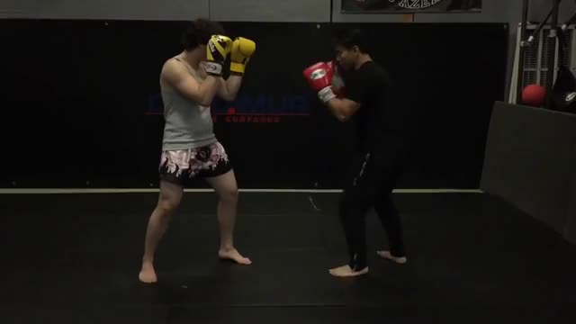Watch Hand Traps - Muay Thai & MMA GIF on Gfycat. Discover more Kickboxing, mma GIFs on Gfycat