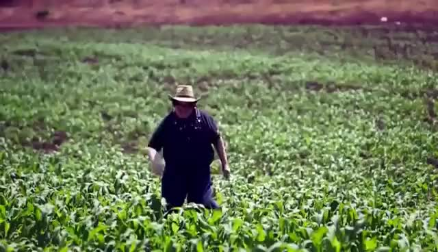 Watch and share Three Loco - We Are Farmers GIFs on Gfycat