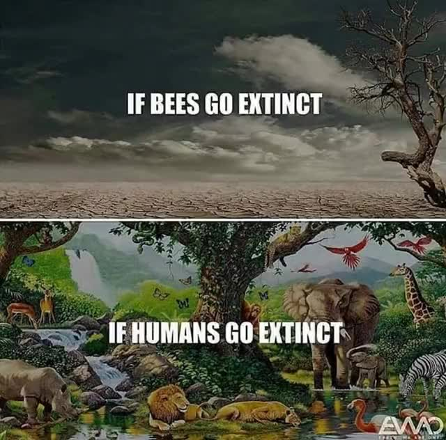 Watch and share Human Extinct GIFs on Gfycat