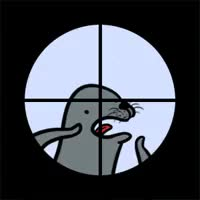 Watch and share Annoying Seal Headshot Annoying Seal GIFs on Gfycat