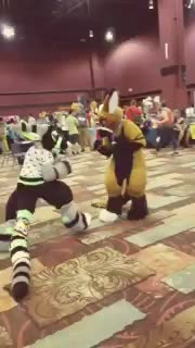 Cosplay Fight GIFs