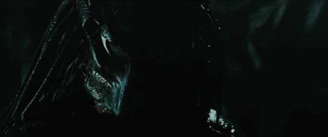 Watch and share Alien Vs Predator GIFs by corvette1710 on Gfycat