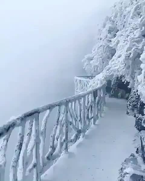 Watch this snow GIF by tothetenthpower (@tothetenthpower) on Gfycat. Discover more snow, snowing, winter GIFs on Gfycat
