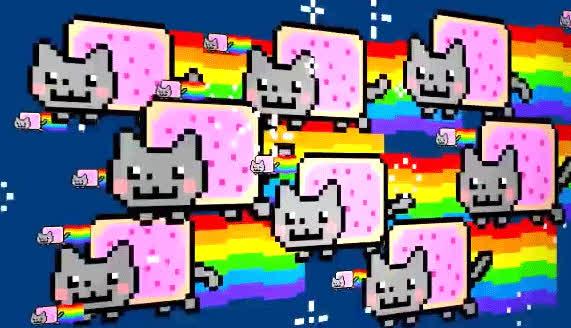 cat cute, nyan cat, nyan cat many GIFs