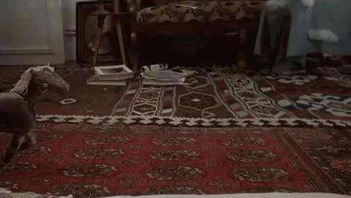 Watch and share Rug GIFs on Gfycat