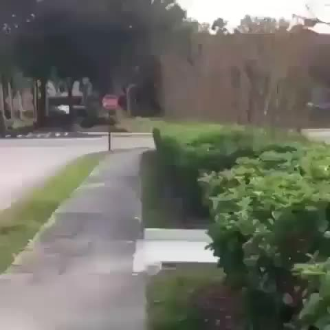 Skating in the road  GIFs