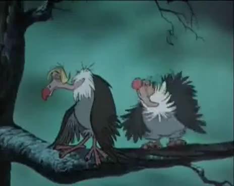 """Watch El libro de la Selva, """"¿Y qué vamos a hacer?"""" GIF on Gfycat. Discover more related GIFs on Gfycat"""