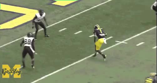 Watch and share Devin Funchess' Hip Shoulder Flexibility GIFs by lifesyourcup on Gfycat