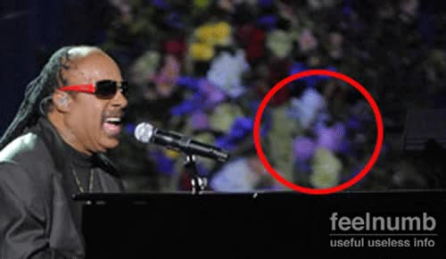 Watch and share Michael Jackson Ghost Image MJ Memorial Stevie Wonder Performance GIFs on Gfycat