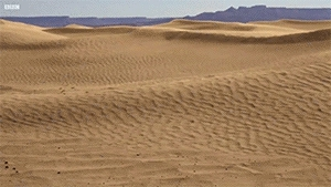 askscience, If all the sand in the Saharan Desert were to be removed, what would the remaining landscape look like? (reddit) GIFs