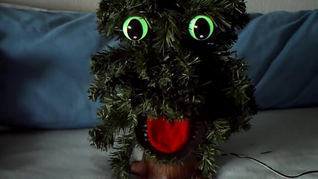Singing Douglas Fir (Christmas tree) GIF