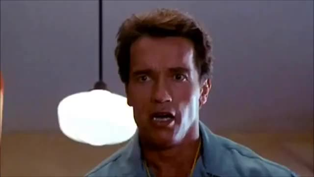 Watch and share All Tags GIFs and Arnie GIFs on Gfycat