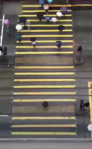 Watch and share Rainy Day In Beijing.  GIFs by LimeLights  on Gfycat
