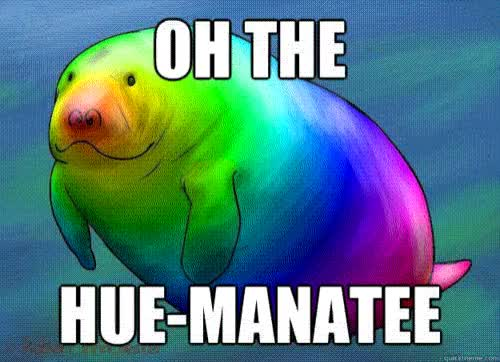 Watch and share Hue-Manatee.gif GIFs by Streamlabs on Gfycat