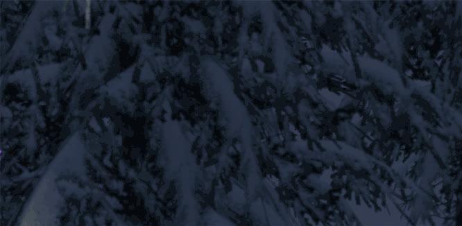 snowthegame, purple GIFs