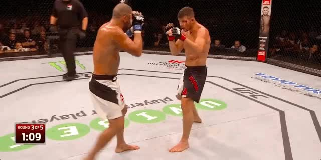 The Primer: Old Dogs - Georges St  Pierre versus Michael