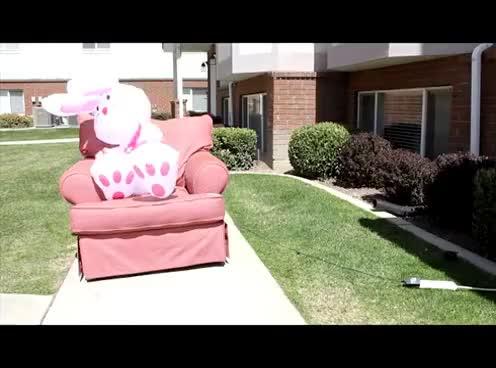 Watch and share Zach GIFs on Gfycat