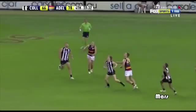 Watch and share Afl GIFs on Gfycat