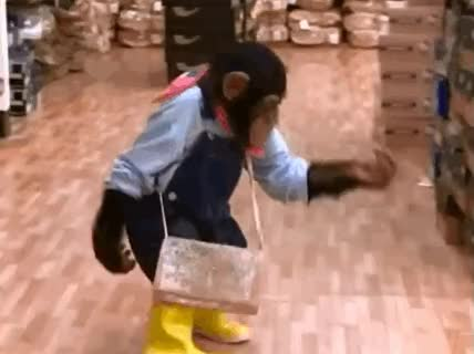 Watch and share Boot GIFs on Gfycat
