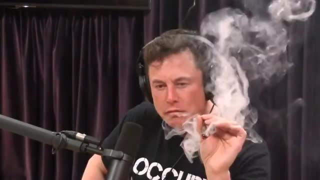 Watch and share Hilarious GIFs and Marijuana GIFs on Gfycat
