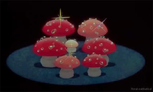 mushrooms fantasia gif GIFs