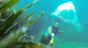 Trapping an air bubble underwater : woahdude GIFs