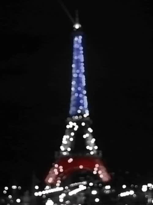 Watch and share France Flag Animated Gif GIFs on Gfycat