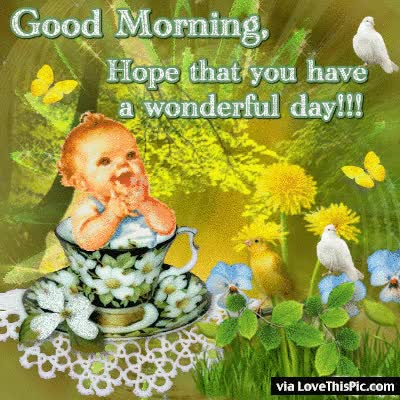 Good Morning Hope You Have Wonderful Day Gif Find Make Share