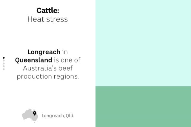 Watch and share Cattle GIFs on Gfycat