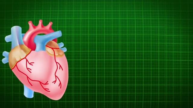Watch and share Heart Beats - 4360 GIFs by digitalprasar on Gfycat