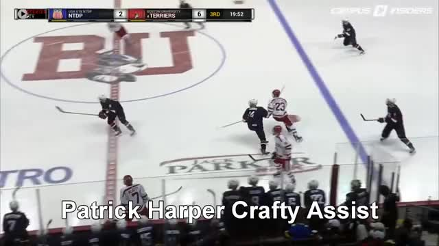 Watch and share Boston University GIFs and Terriers GIFs by otfbryantfair44 on Gfycat