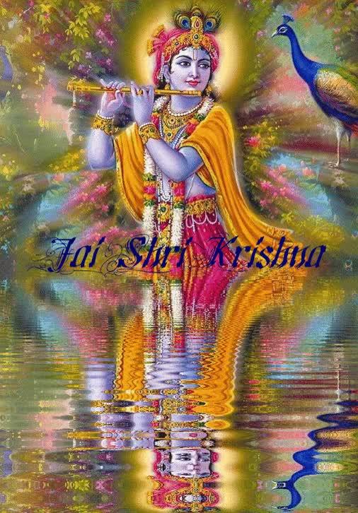 Watch and share Shri GIFs on Gfycat