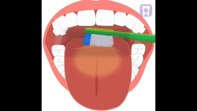 Watch and share Toothbrush GIFs and Flossing GIFs on Gfycat
