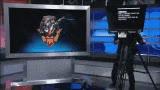 Watch and share Tsm GIFs on Gfycat