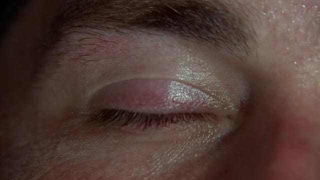 Watch LOST: Opening Scene 1x01 - Bamboo Forest GIF by @codymjohnston on Gfycat. Discover more jack shephards' eyes, lost, season 1 pilot GIFs on Gfycat