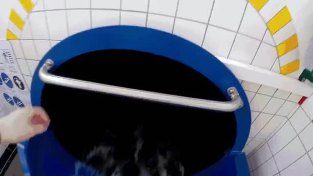 Watch and share Water Slide GIFs by t-h-a-t-o-n-e-8-6 on Gfycat