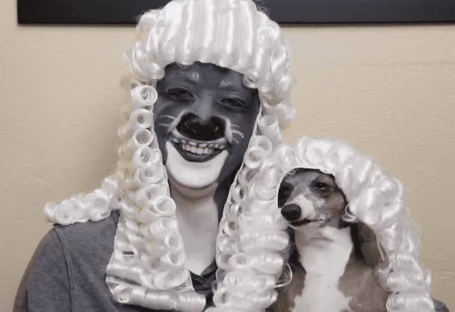 Watch this dog GIF by ioanna on Gfycat. Discover more a, awesome, costume, dog, dressed, funny, haha, hilarious, joke, laugh, like, lol, loud, make, out, pet, puppy, smile, twins, up GIFs on Gfycat