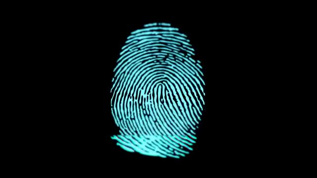 Watch and share Biometric Fingerprint Scanner - Royalty Free Footage GIFs on Gfycat