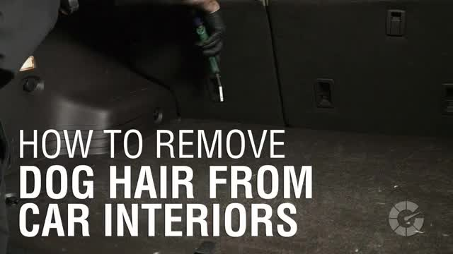 how to remove dog hair from car interiors autoblog details gif create discover and share on. Black Bedroom Furniture Sets. Home Design Ideas